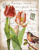 French Botanical II