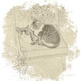 Feline Illustration II