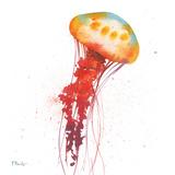 Deep Sea Jellies II Reproduction d'art par Paul Brent