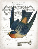 French Swallow I