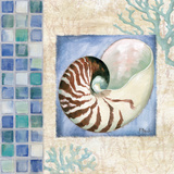 Mosaic Shell Collage V