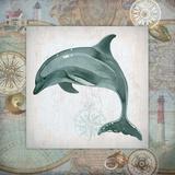 Nautical Dolphin