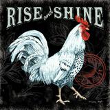 Rise and Shine II