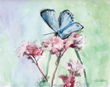 Watercolor Butterfly I