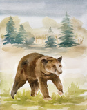 Wildlife IV
