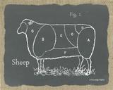 Sheep on Burlap