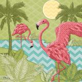 Island Flamingo II