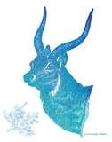 Indigo & Teal Deer II