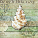 Sea Glass Shell I