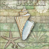 Sea Glass Shell II
