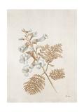 French Botanicals V