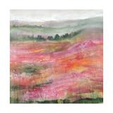 Raspberry Rolling Hills