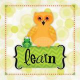 Owl Learn