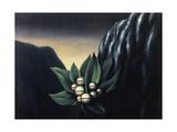 Les fleurs de l'abme  1928