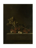 A Sprig of Gooseberries on a Stone Plinth
