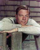 Peter Graves Leaning in Classic Portrait