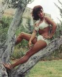 Senta Berger Posed in White Bikini on a Tree