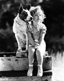Shirley Temple sitting with a Dog in a Classic Portrait