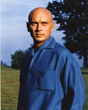 Yul Brynner Posed in Blue Long sleeves