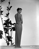Vera Miles photographed in front of plant designed background  looking over her shoulder to the cam