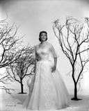 Vera Miles photographed with leaveless trees  wearing a white tule ballgown  with tule quartered sl