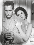 Cat On A Hot Tin Roof Couple Portrait in Black and White