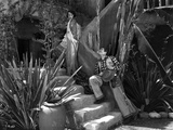 Bebe Daniels Walked on the Stairs while a Man Wooing Her with Guitar Music