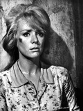 Inger Stevens Leaning on a Wall in Printed Dress