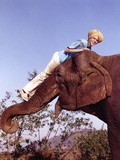 Jay North Riding on Elephant in Blue Short Sleeve Shirt and White Long Pants