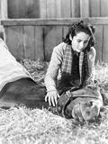 National Velvet Girl Watching Her Horse Dying