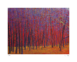 Deep Red Forest