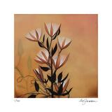 Elaeocarpus Flower