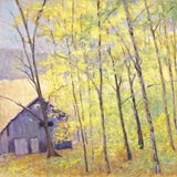 Barn at the Edge of the Woods