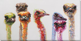 Technicolor Ostrich Party Toiles retouchées à la main