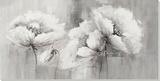 Ephemeral Flora
