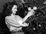 Ella Raines on a Checkered Top and Harvesting an Orange