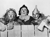 Wizard Of Oz Portrait Coward Lion  Scarecrow and Tinman