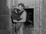 Johnny Weissmuller Carrying a Monkey in Black and White