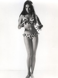 Julie Newmar in Lingerie With White Background