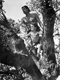 Johnny Weissmuller Climbing Tree in Black and White