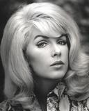 Stella Stevens Close-up Classic Portrait
