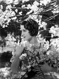 Norma Shearer Portrait in Plaid Dress