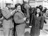 Abbott & Costello Posed with a Horse