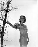 Inger Stevens wearing a Printed Dress