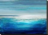 Reflection on the Horizon II