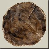Timber II