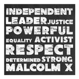 Respect Malcolm X