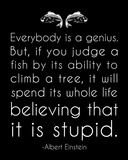 Einstein Genius Quote