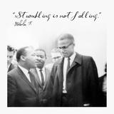 Stumbling is Not Falling
