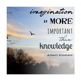 Imagination is More Important Than Knowledge - Albert Einstein